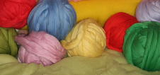 lana cardata 1
