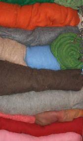 lana cardata 2