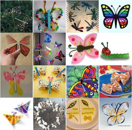 bruchi-farfalle-e-libellule