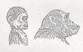 Le bambole e l'antroposofia di Rudolf Steiner seconda parte 3