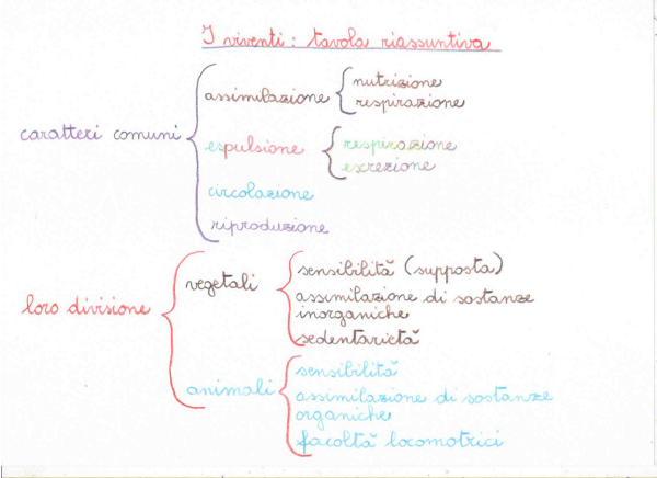 Introduzione-alla-biologia-9