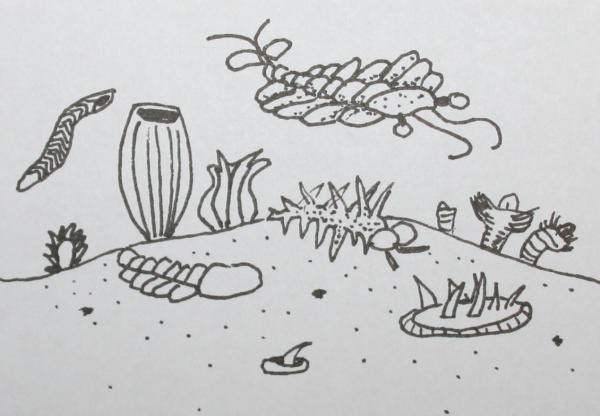 Disegni da colorare la comparsa dei viventi sulla terra - Animali terrestri per bambini ...