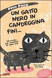 un gatto nero in candeggina finì
