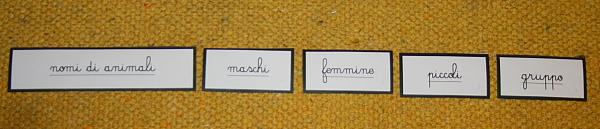nomi di animali Montessori 2