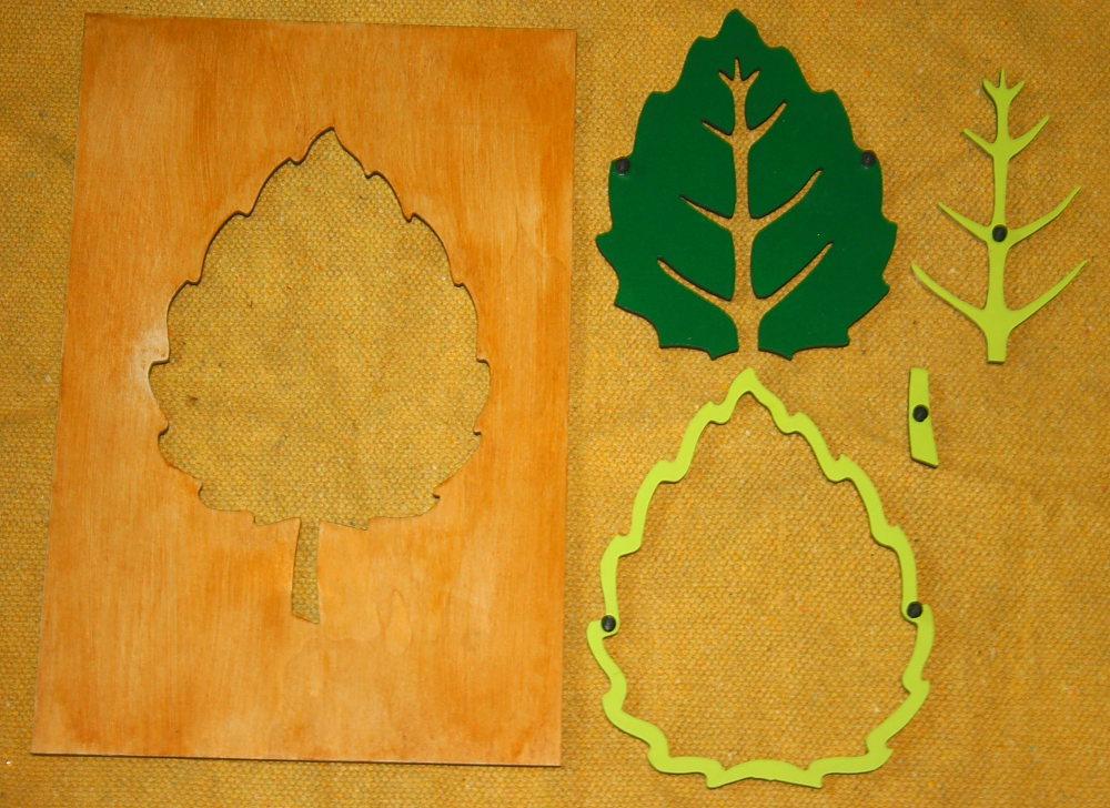 incastro foglia Montessori 2