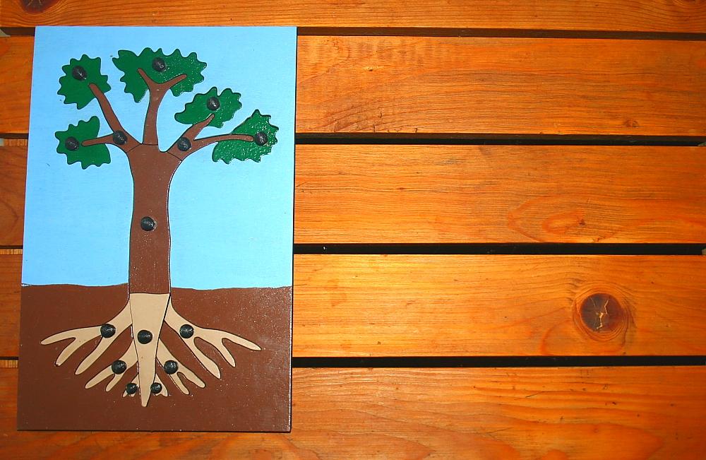 incastro pianta Montessori 3