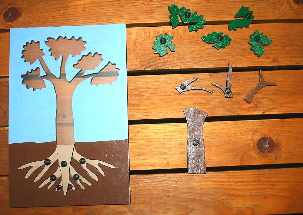incastro pianta Montessori 6