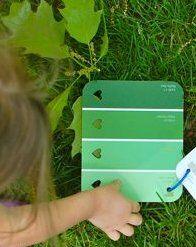 spolette dei colori Montessori 5