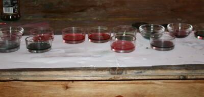 Esperimenti scientifici per bambini - il succo di cavolo rosso 7