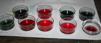 Esperimenti scientifici per bambini - il succo di cavolo rosso 9