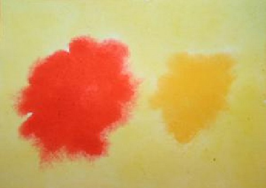 Acquarello steineriano – esercizio di colore 6 1