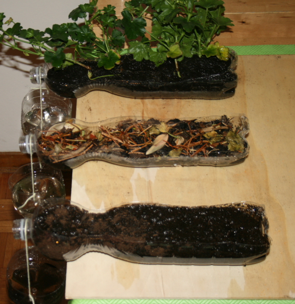 Science experiment on soil erosion la pappadolce for Soil and plant lab