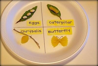 Lavoretti per la primavera: farfalle, bruchi e libellule - 50 e più progetti