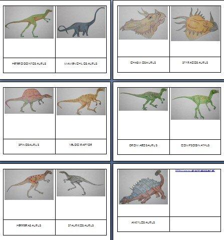 Dinosauri - nomenclature Montessori