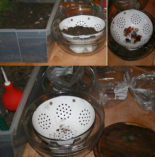 Guest tutorial preistorico - Idee per una sensory tub 16