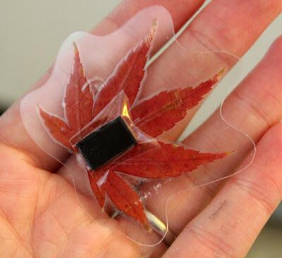 leafmagnets3