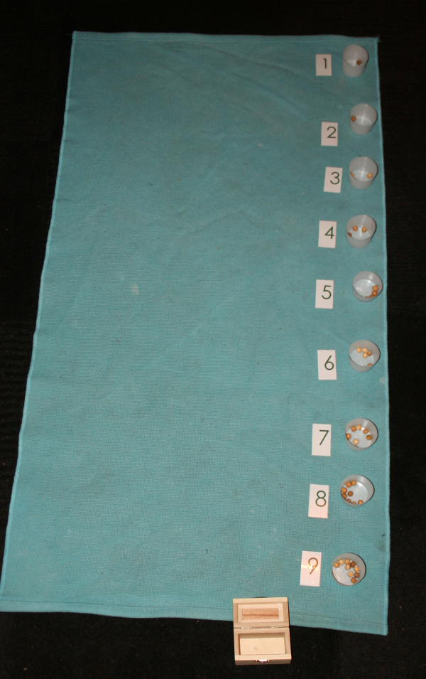 psicoaritmetica Montessori 43