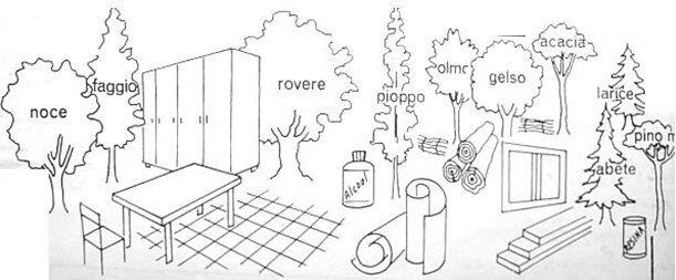 piante industriali