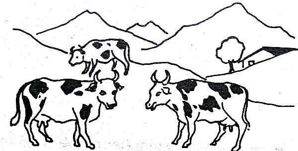 Le Alpi Materiale Didattico Vario Lapappadolce