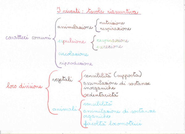 Introduzione alla biologia 9