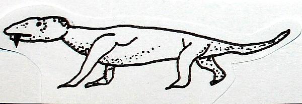 DICINODONTI 12