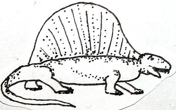 EDAFOSAURO 9