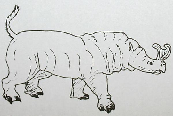 brontoterio 169