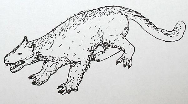 creodonti 156