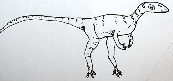 eoraptor 124