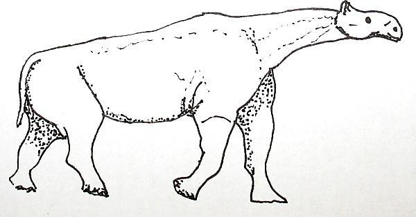 indricotherium 171