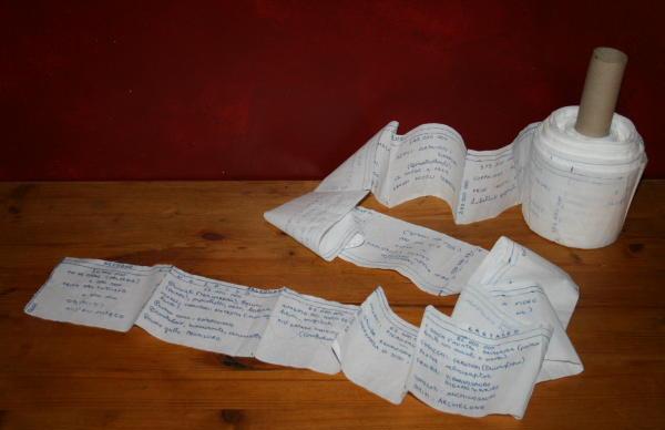 Linea del tempo di carta igienica per la comparsa dei viventi