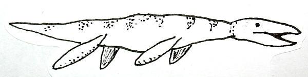 liopleurodonte 131