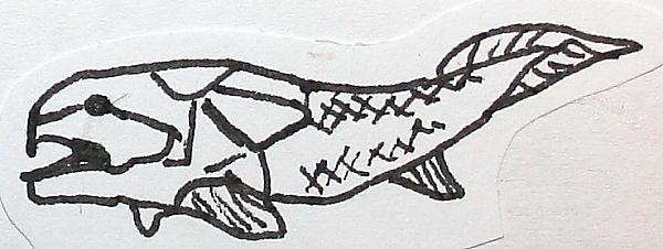osteostraci 71
