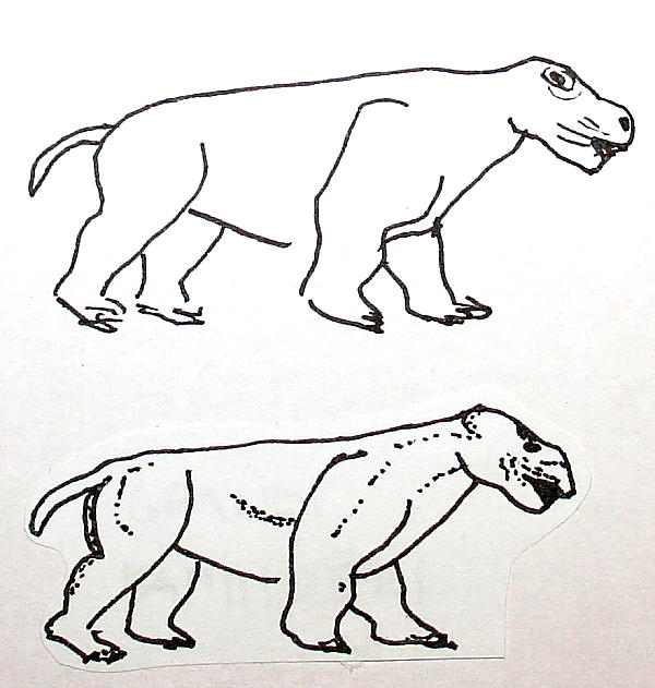 pantodonte 175