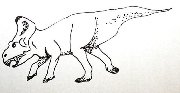protoceratops 147