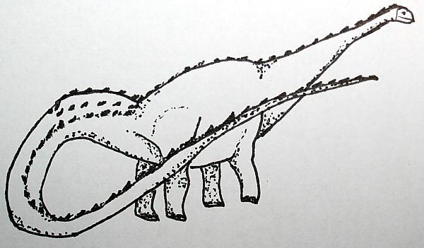 seismosaurus 135