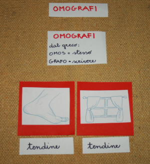 omografi Montessori 19