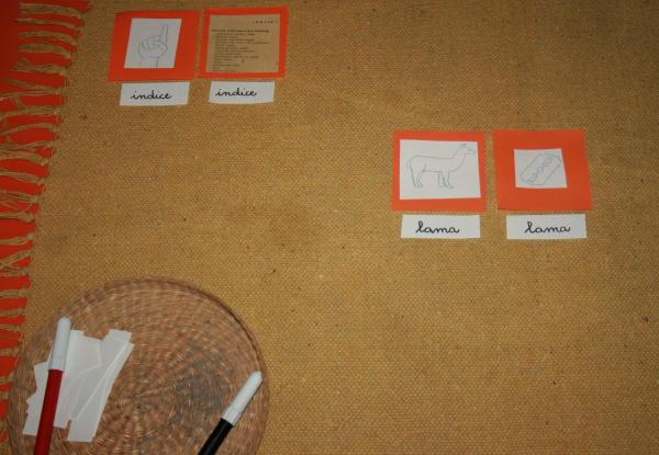 omonimi Montessori 13