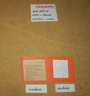 omonimi Montessori 9