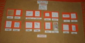 Omonimi, omografi e omofoni col metodo Montessori