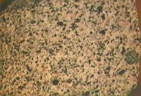 granodiorite 173