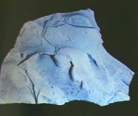 idrozincite 67