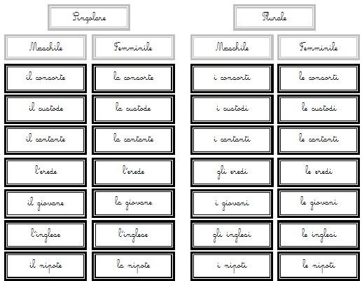 genere e numero del nome Montessori 7