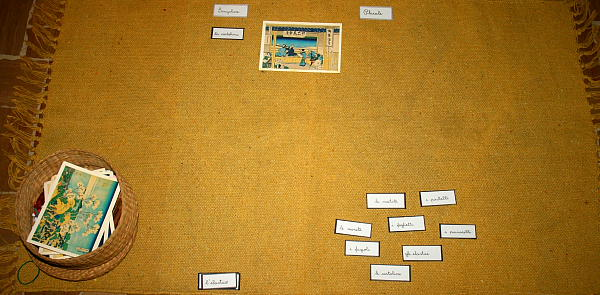 plurale dei nomi Montessori 11