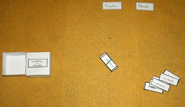 plurale dei nomi Montessori 6