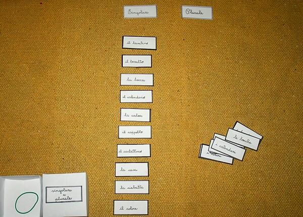 plurale dei nomi Montessori 7