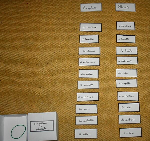 plurale dei nomi Montessori 8
