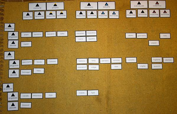 classificazione dei nomi 2