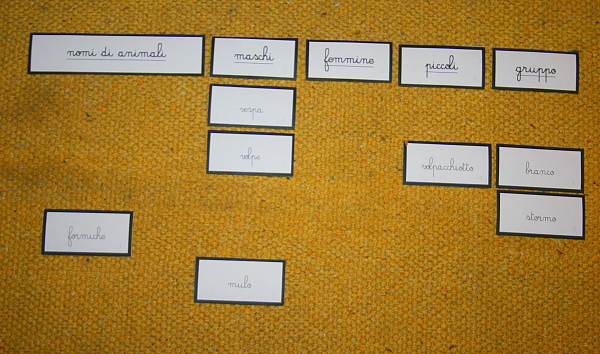 nomi di animali Montessori 3