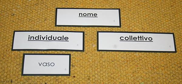 nomi individuali collettivi 3